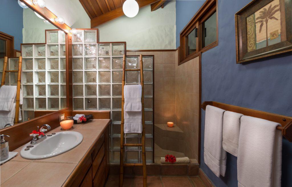 guest-master-bathroom