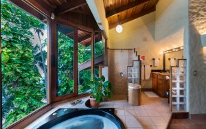 main-master-jacuzzi-shower
