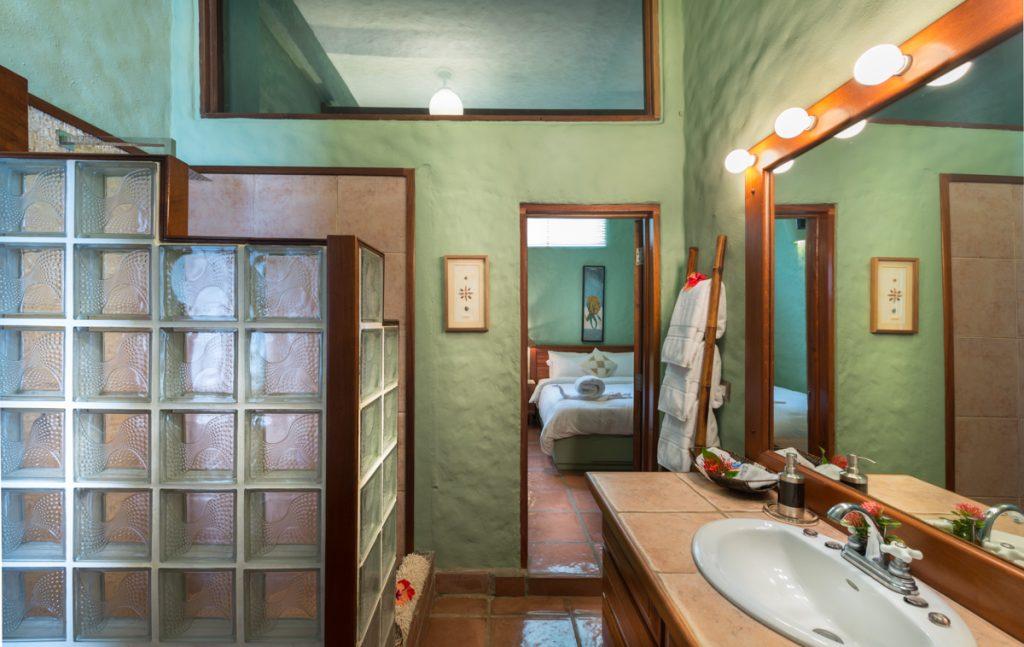 sharred-downstairs-bathroom