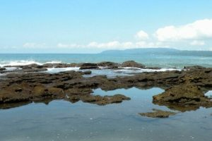 tide-pools-costa-rica